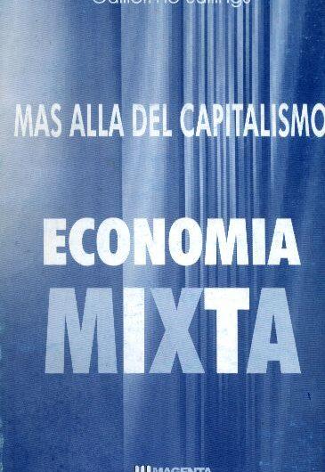 Video corso: Economia Mista